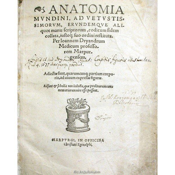 Kniha anatómie