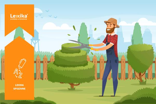 Záhradkár strihajúci stromy